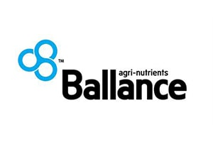 Ballance logo - Lean Six Sigma Training - Thornley Group